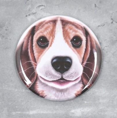 Beagle -Nappi (Koirarodut)