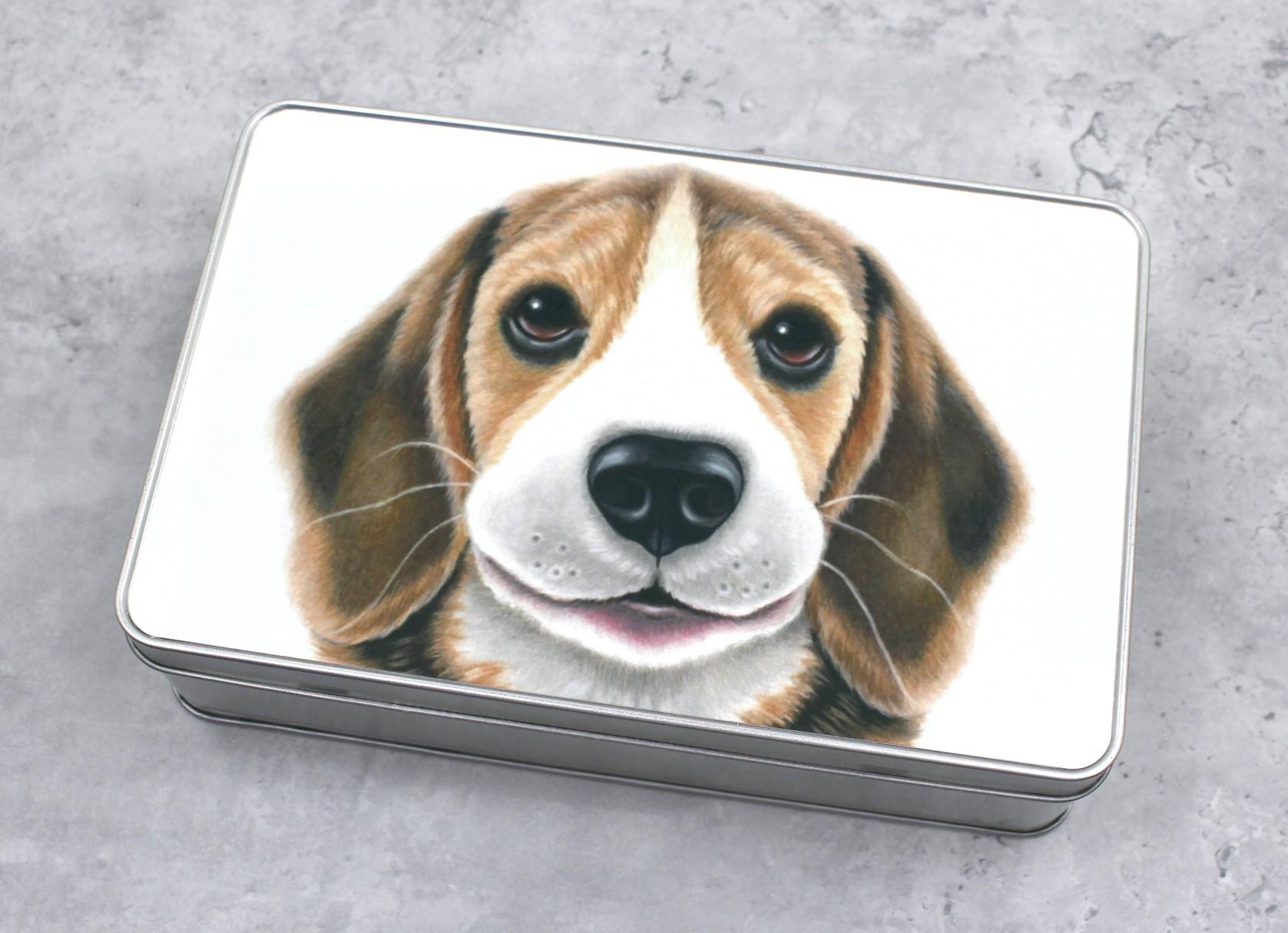 Beagle -Peltirasia (Koirarodut)