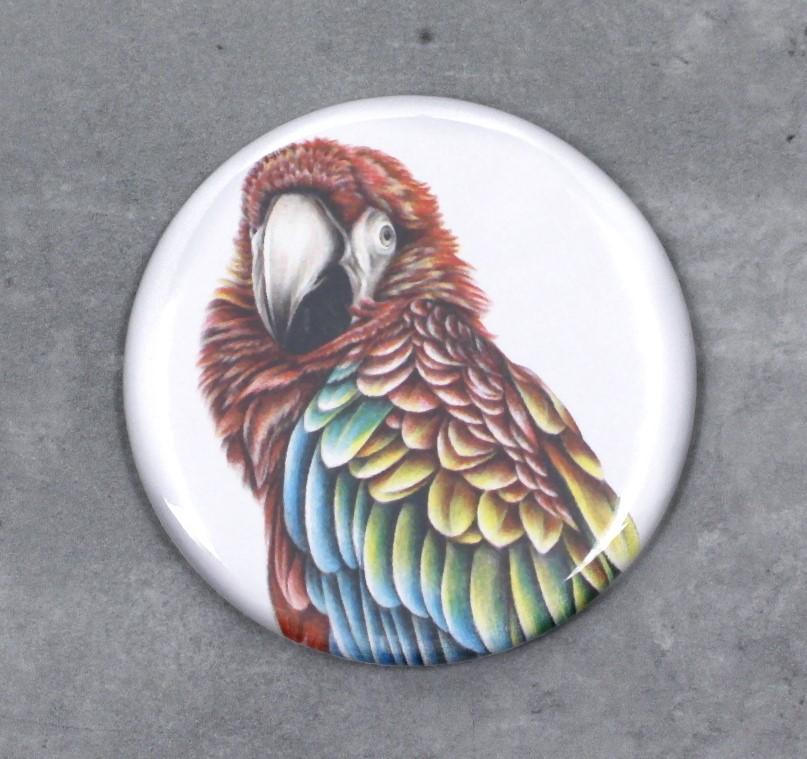 Papukaija Punainen Macaw -Nappi