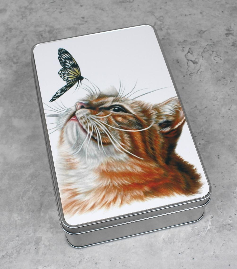 Kissa ja perhonen -Peltirasia