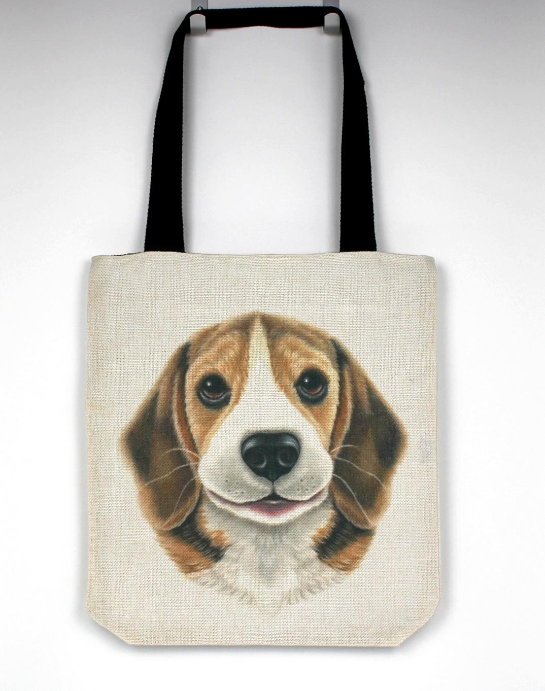 Beagle -Kassi (Koirarodut)