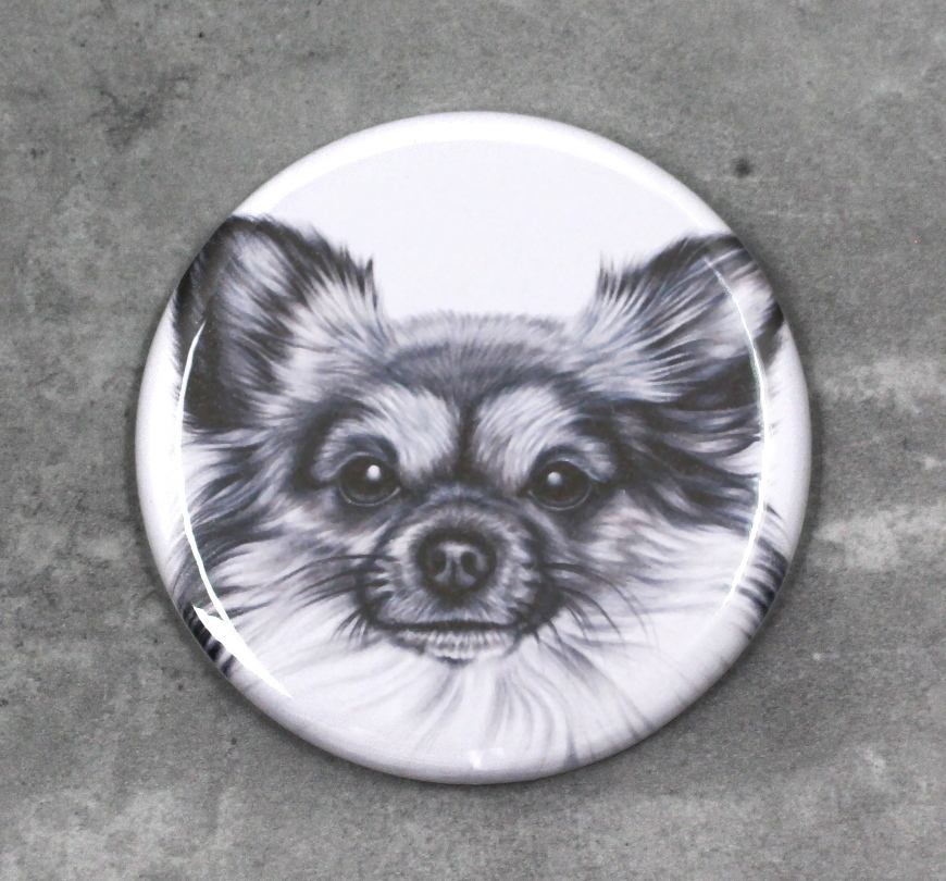 Chihuahua Pitkäkarvainen -Nappi (Koirarodut)