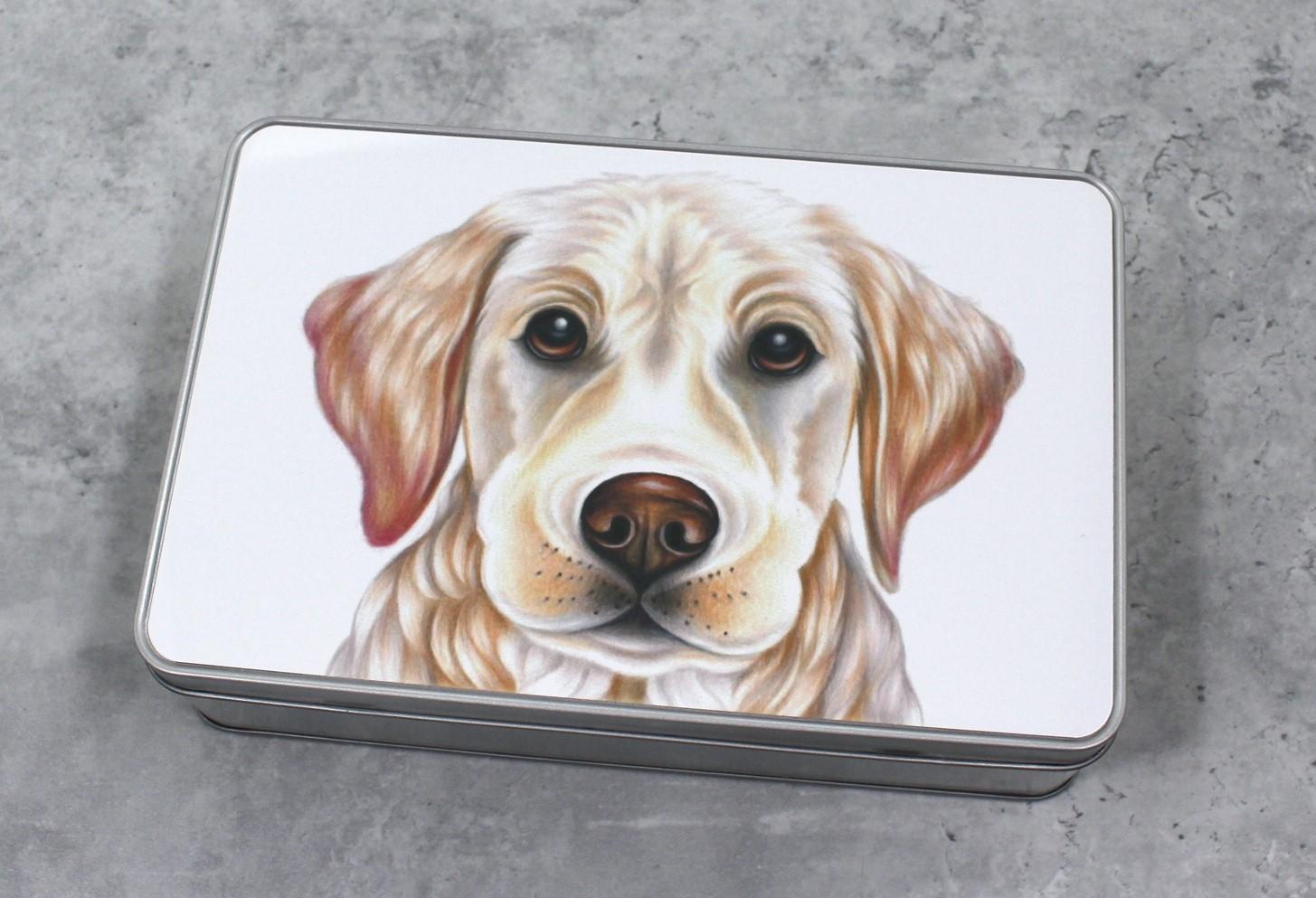 Kultainennoutaja / Vaalea Labradorinnoutaja -Peltirasia (Koirarodut)