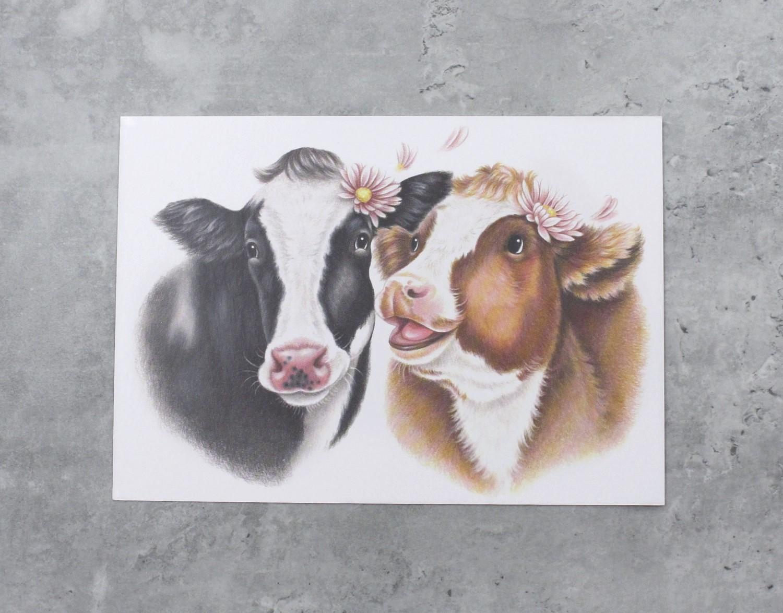 Lehmäpari -Postikortti