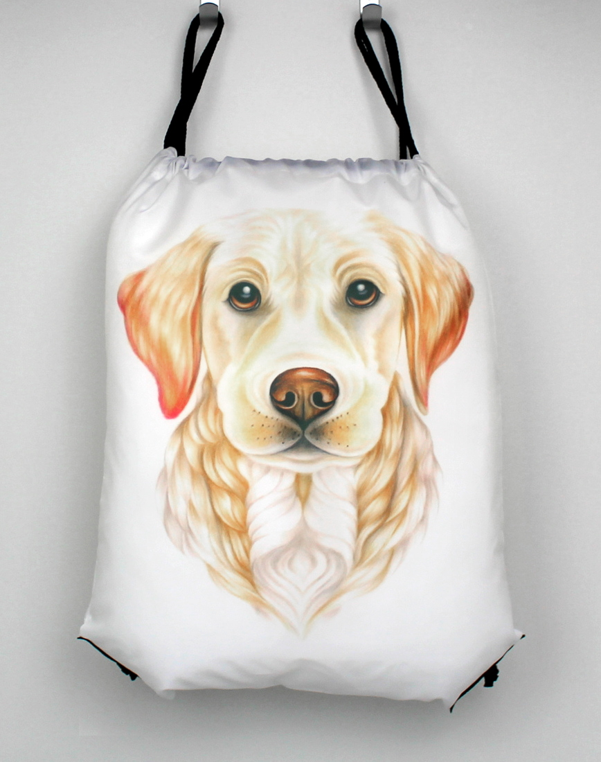 Kultainennoutaja / Vaalea Labradorinnoutaja -Narureppu (Koirarodut)