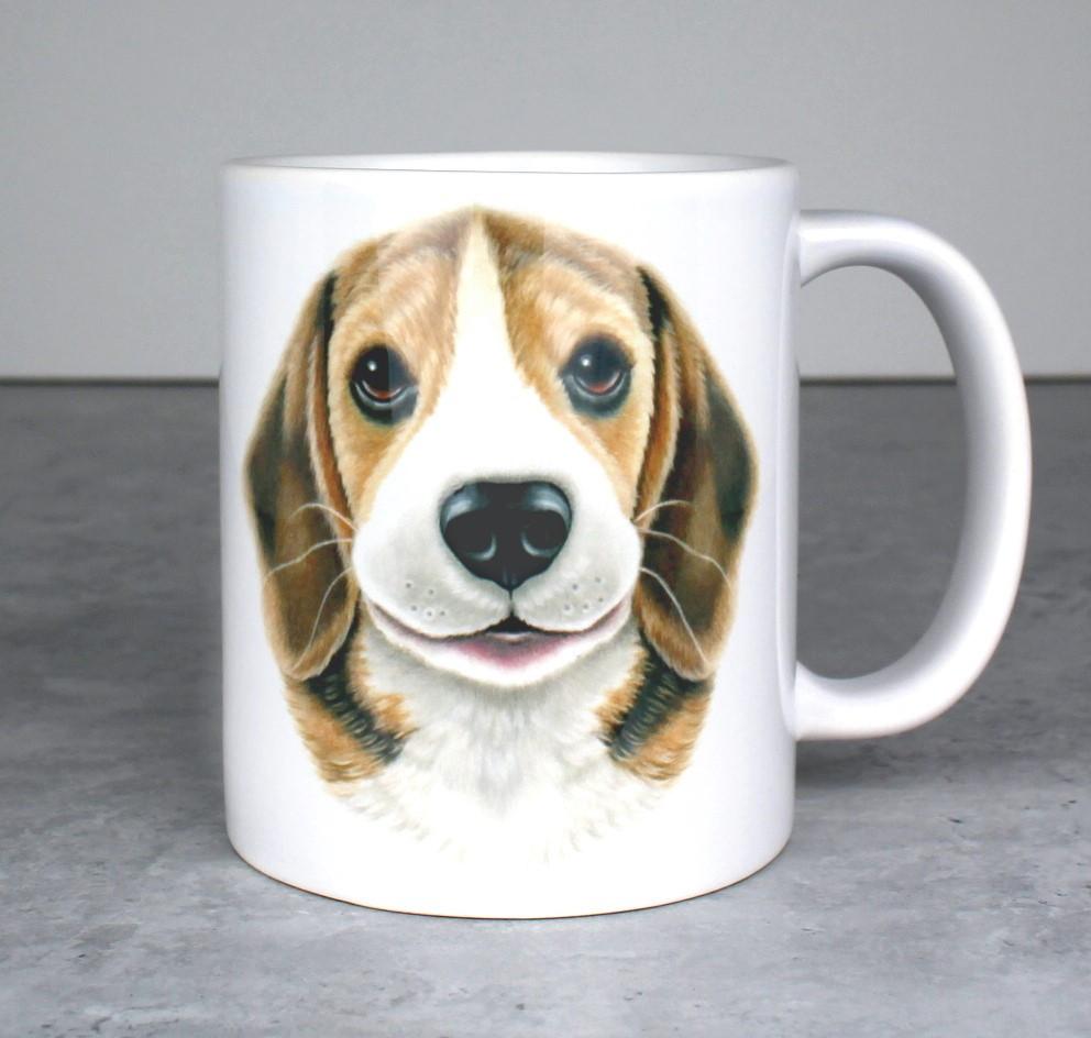 Beagle -Muki (Koirarodut)