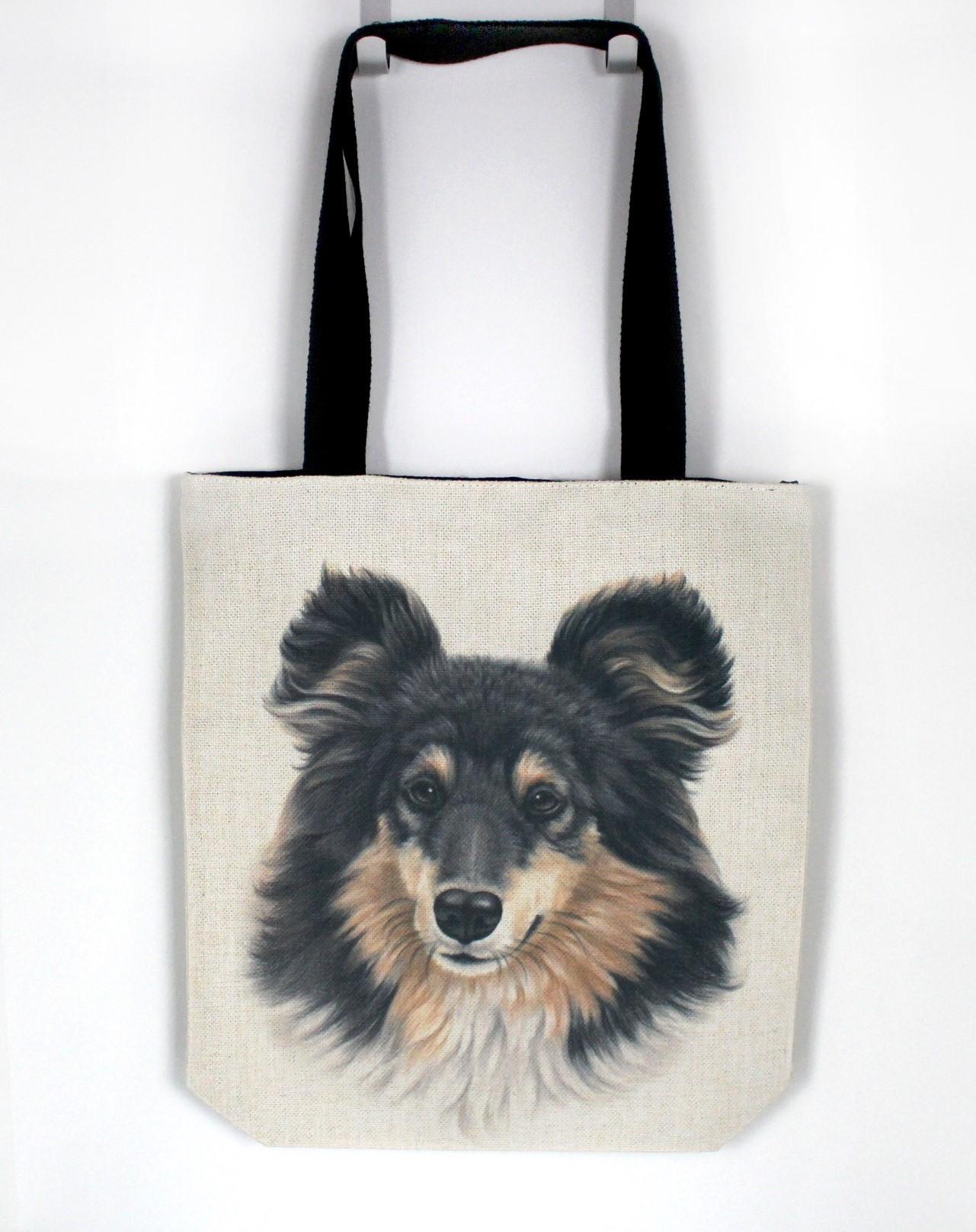 Collie Tricolor -Kassi (Koirarodut)