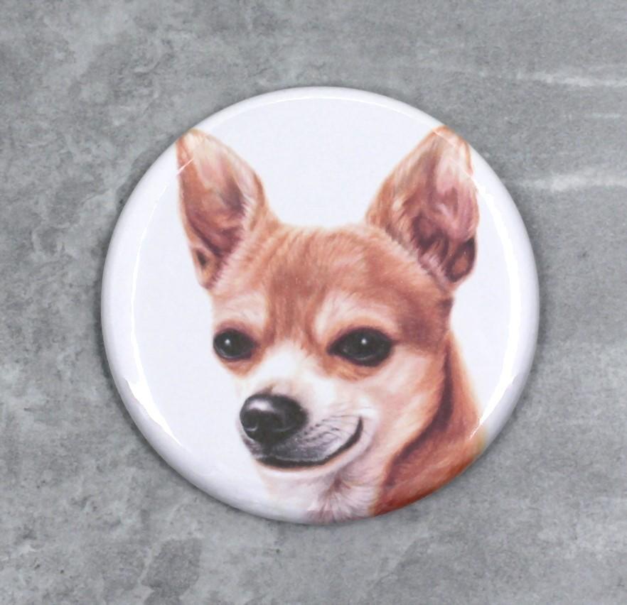 Chihuahua -Nappi (Koirarodut)