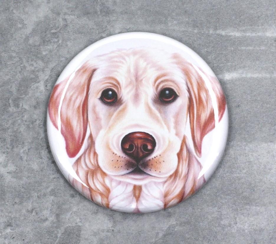 Kultainennoutaja / Vaalea Labradorinnoutaja -Nappi (Koirarodut)