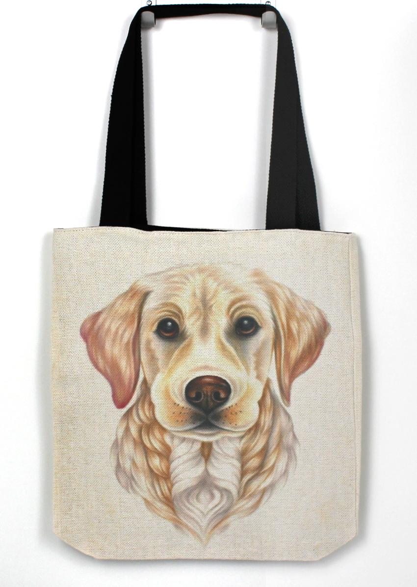 Kultainennoutaja / Vaalea Labradorinnoutaja -Kassi (Koirarodut)