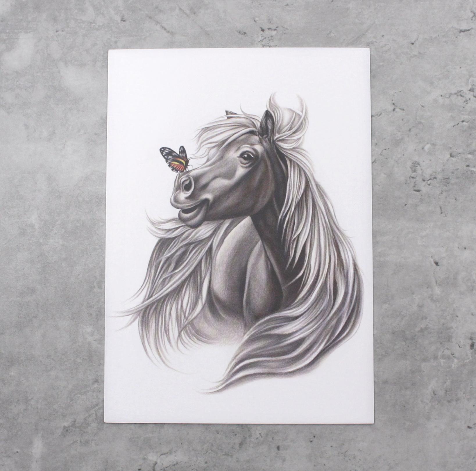 Hevonen ja perhonen -Postikortti