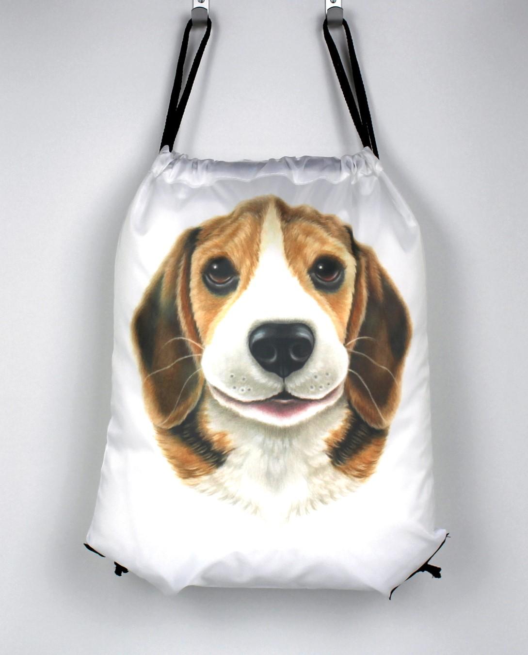 Beagle -Narureppu (Koirarodut)