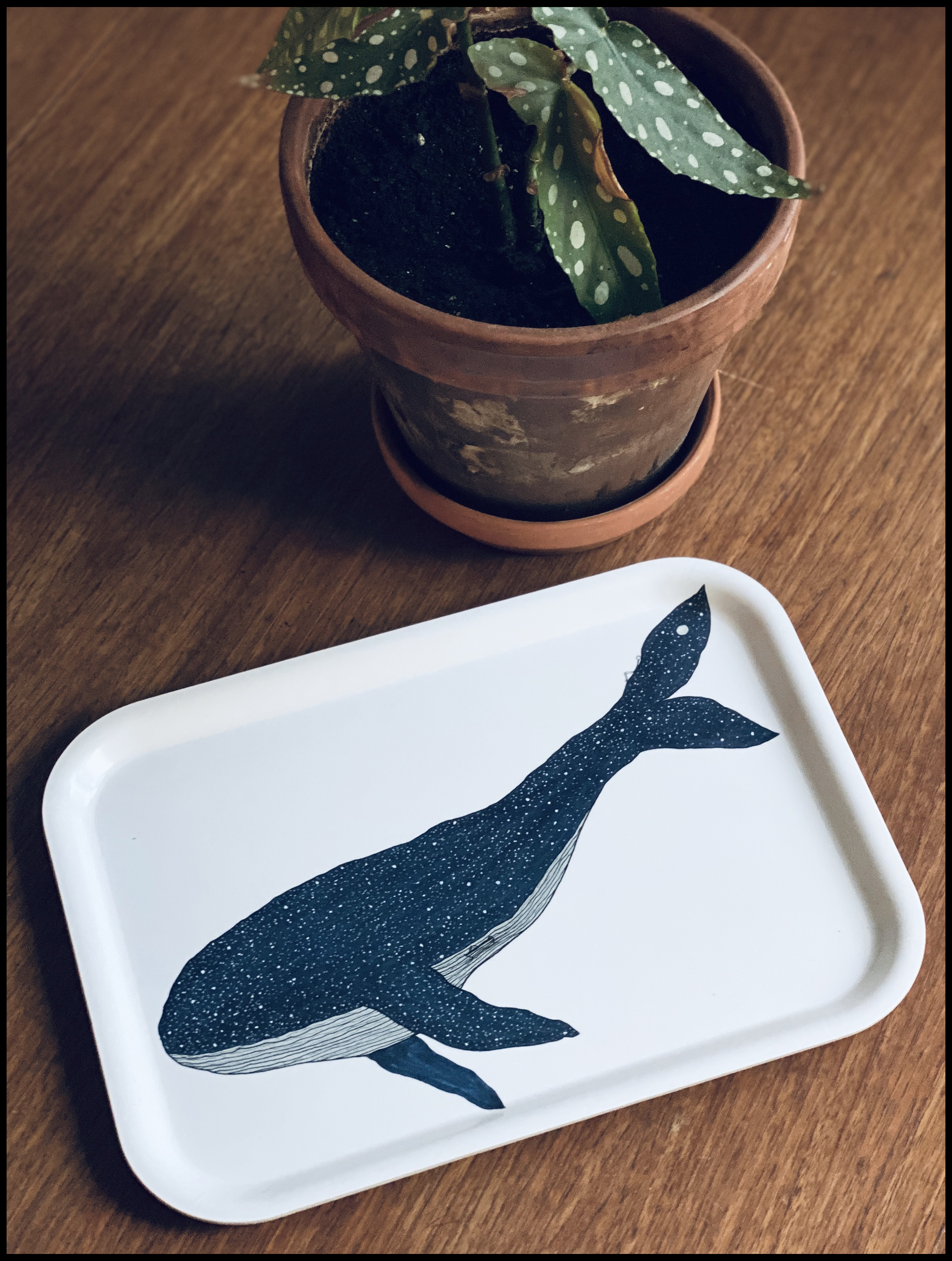 Anniversary whale tray!