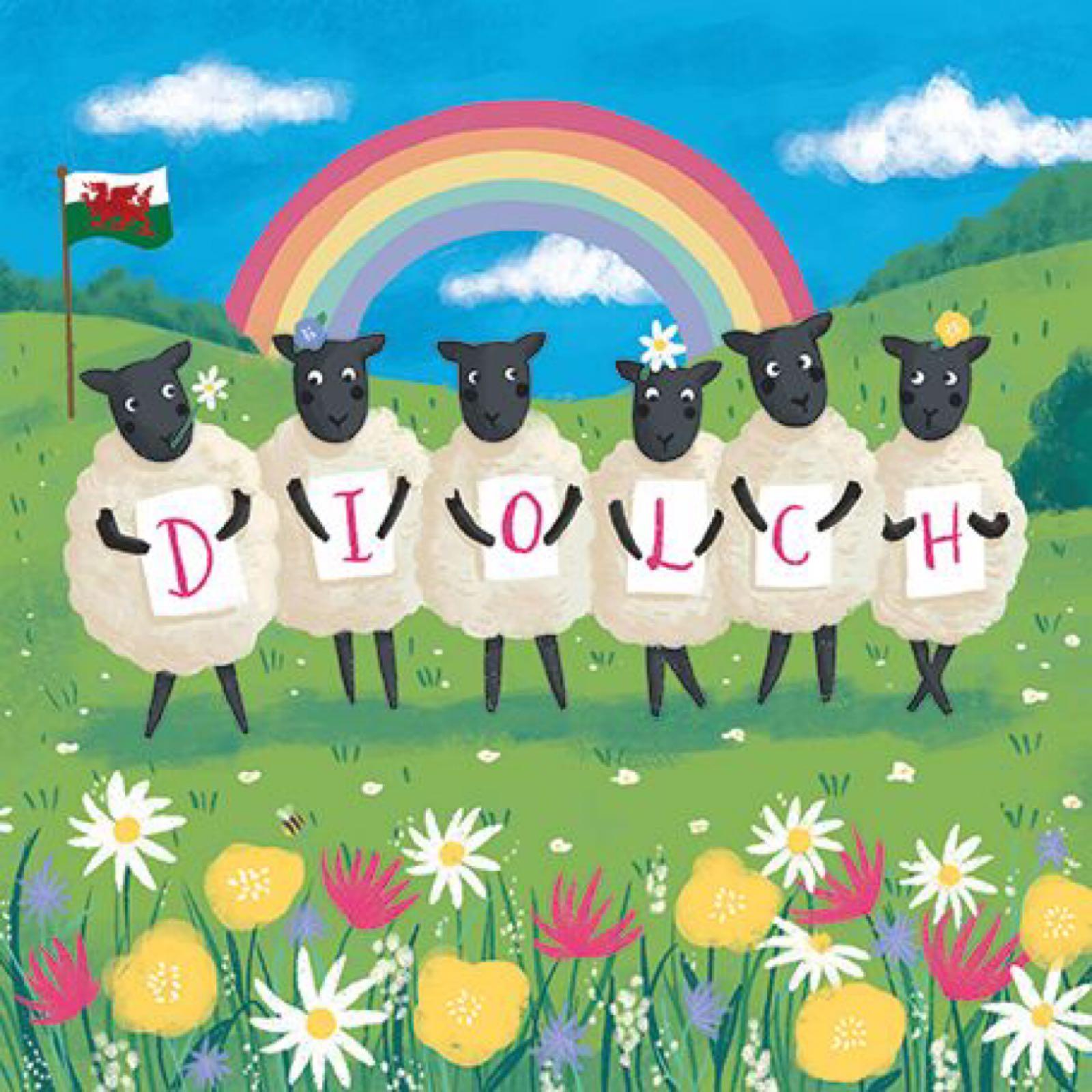 Diolch Rainbow Sheep (CAR119)