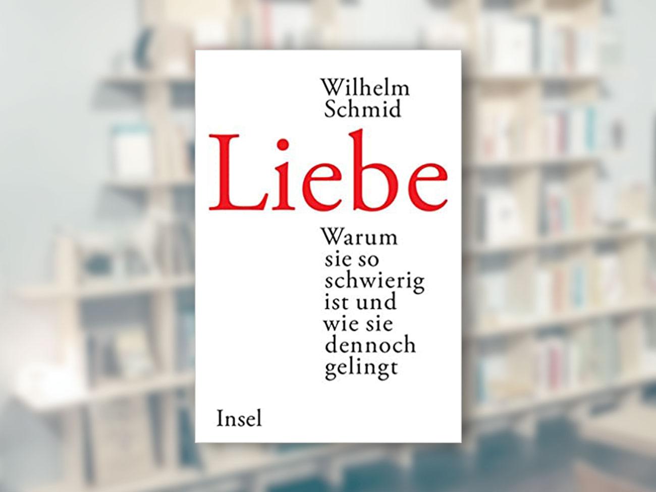 Wilhelm Schmid, Liebe: Warum sie so schwierig ist und wie sie dennoch gelingt
