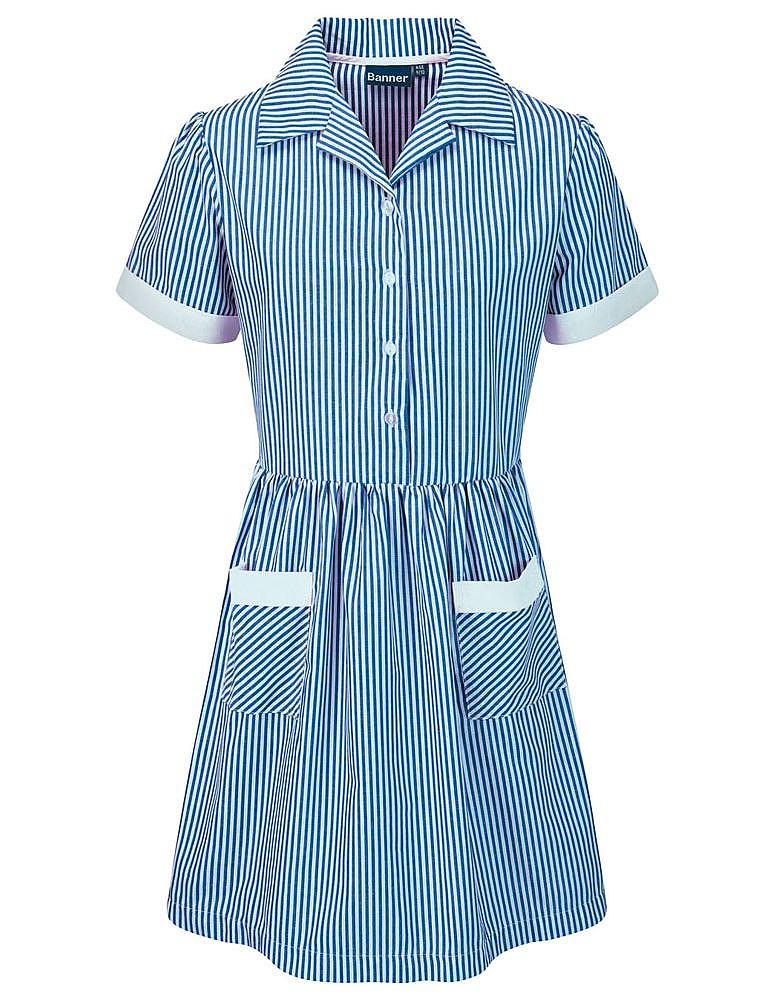 Busbridge Juniors Summer Dress (Blue Stripped)