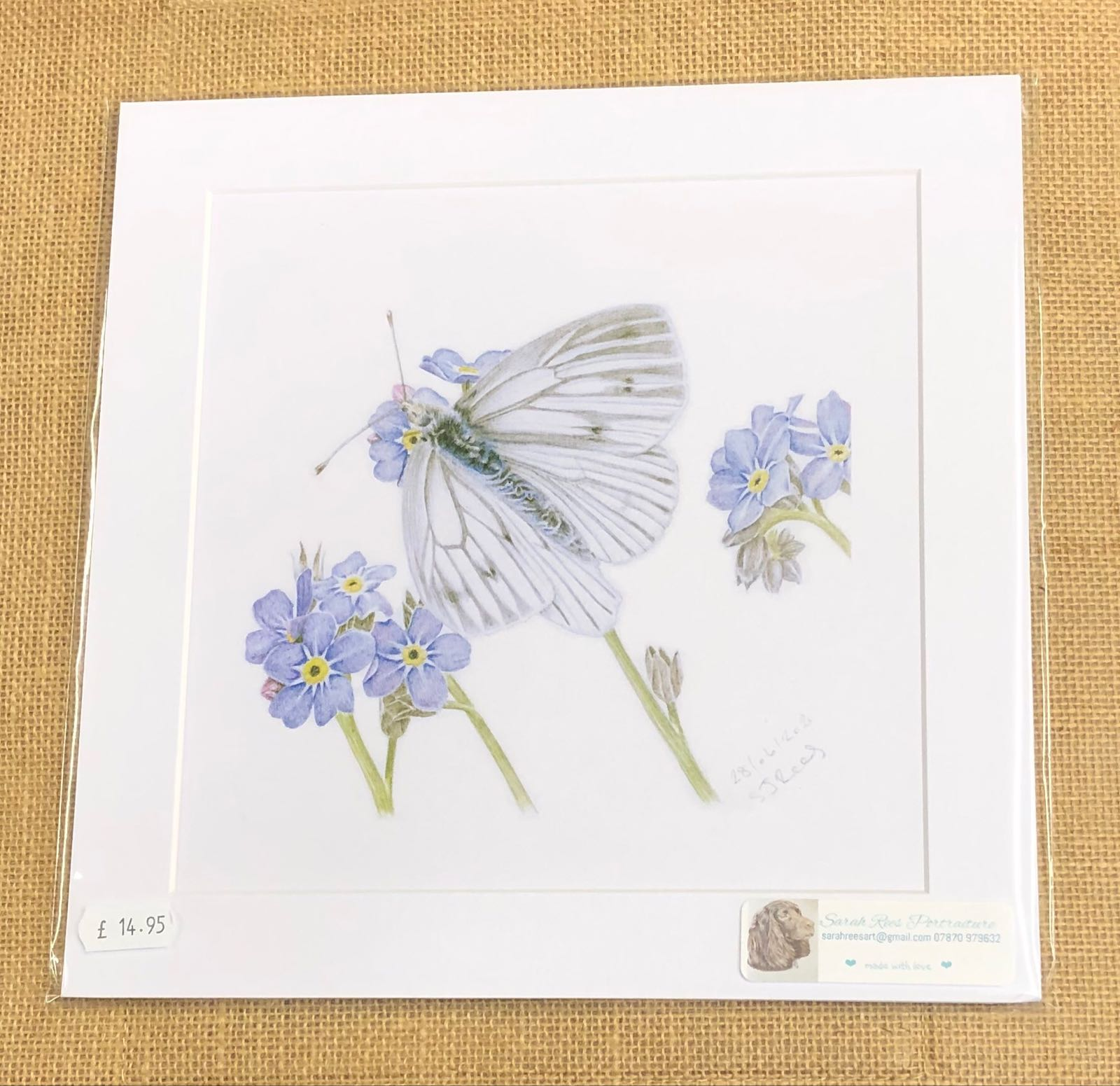 White butterfly on  forget me not print - Sarah Rees
