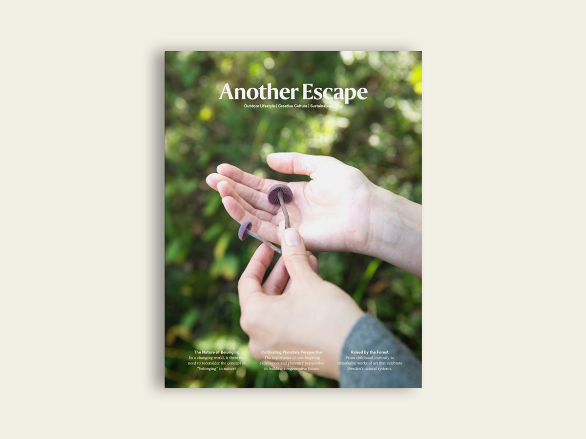Another Escape #13