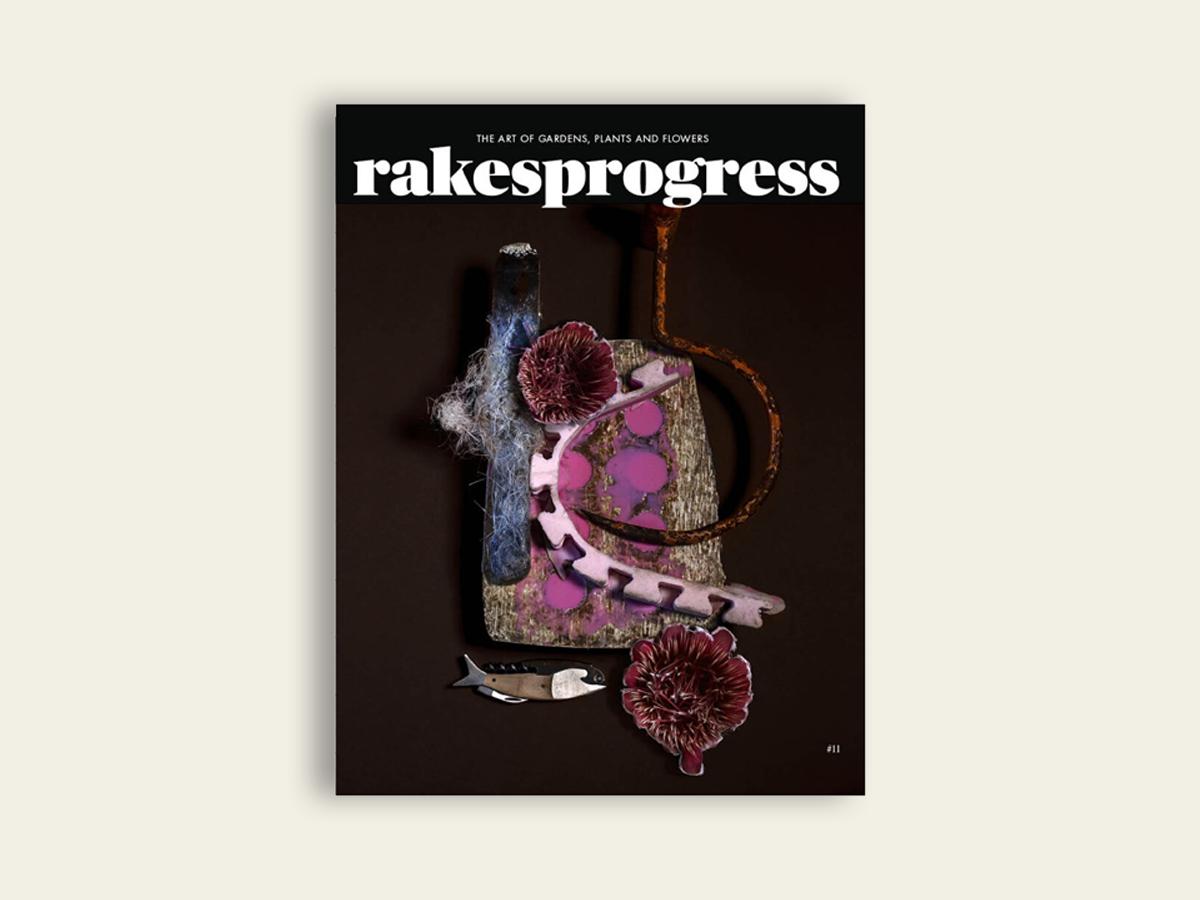 Rakesprogress #11