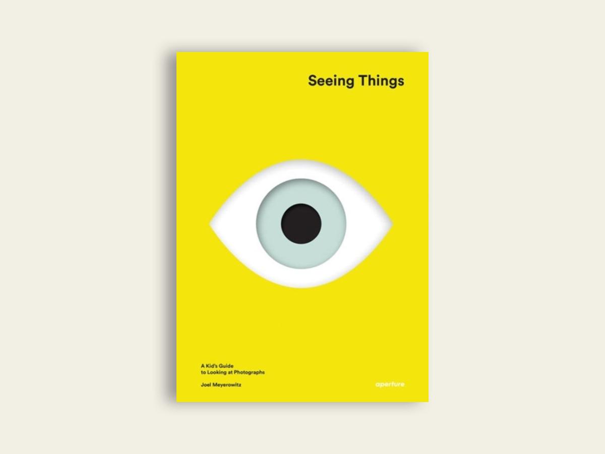 Seeing Things, Joel Meyerowitz