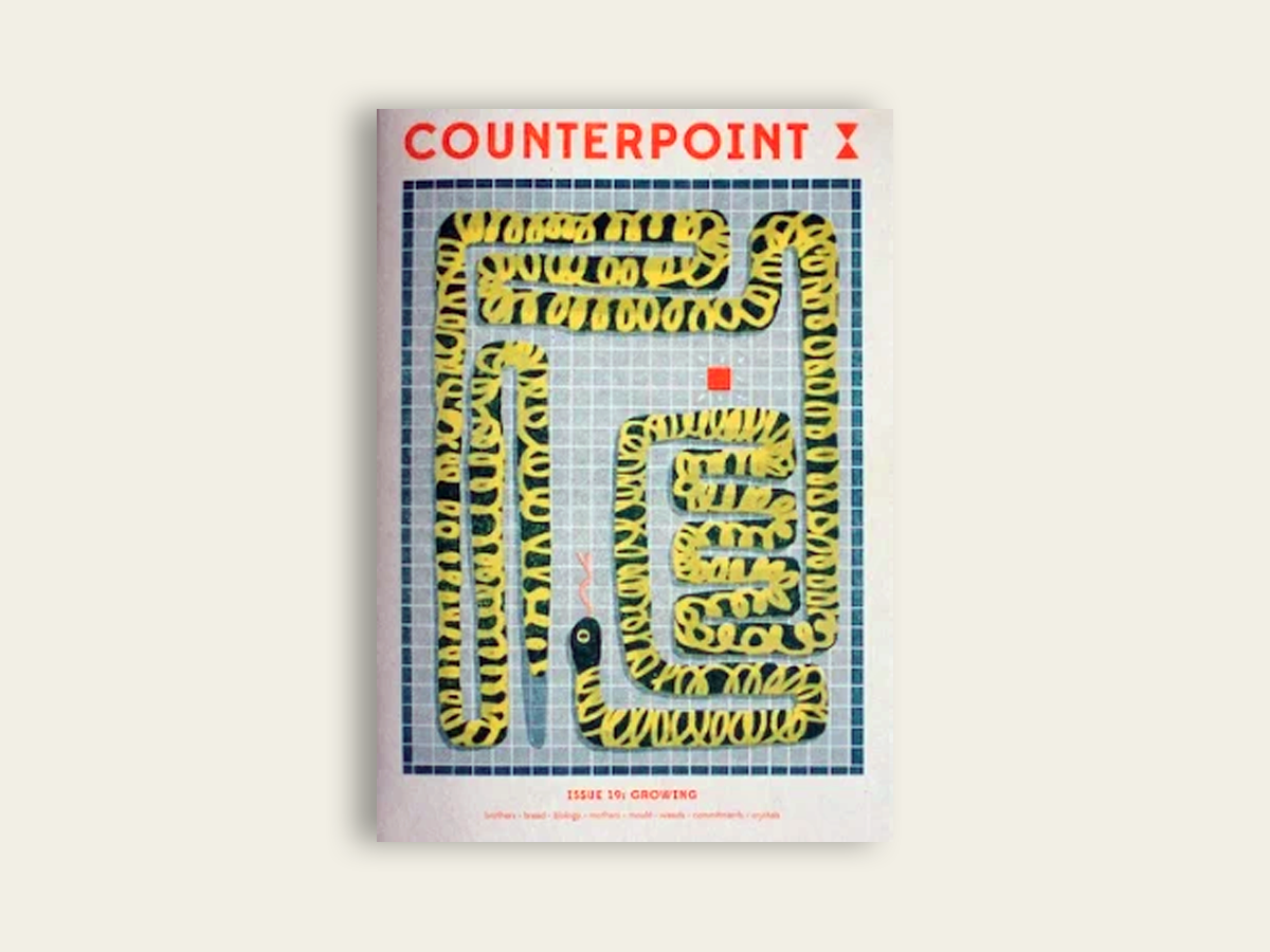 Counterpoint #19
