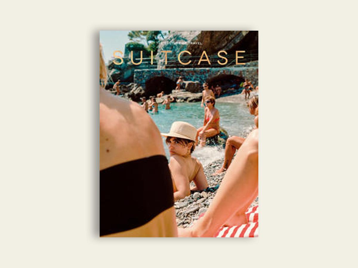 Suitcase #31