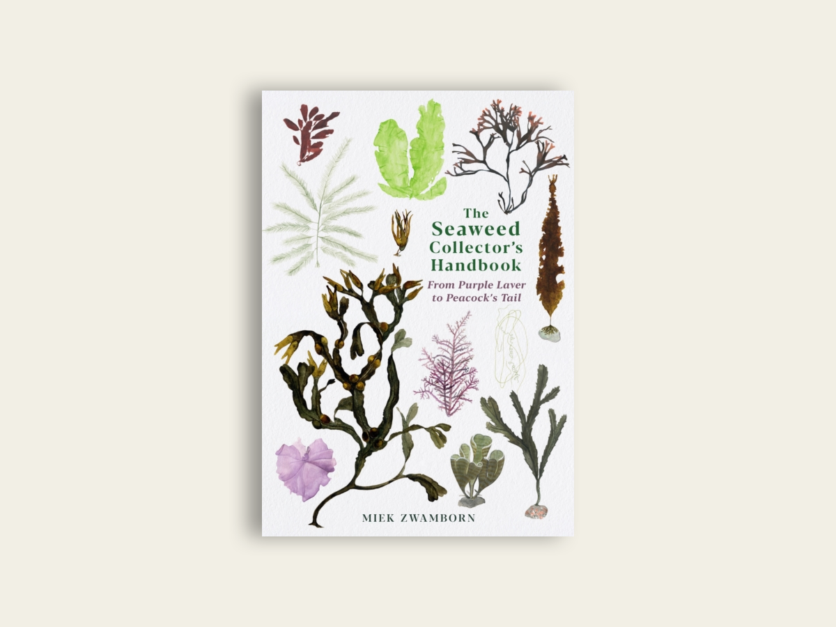 The Seaweed Collector's Handbook: From Purple Laver to Peacock's Tail by Miek Zwamborn