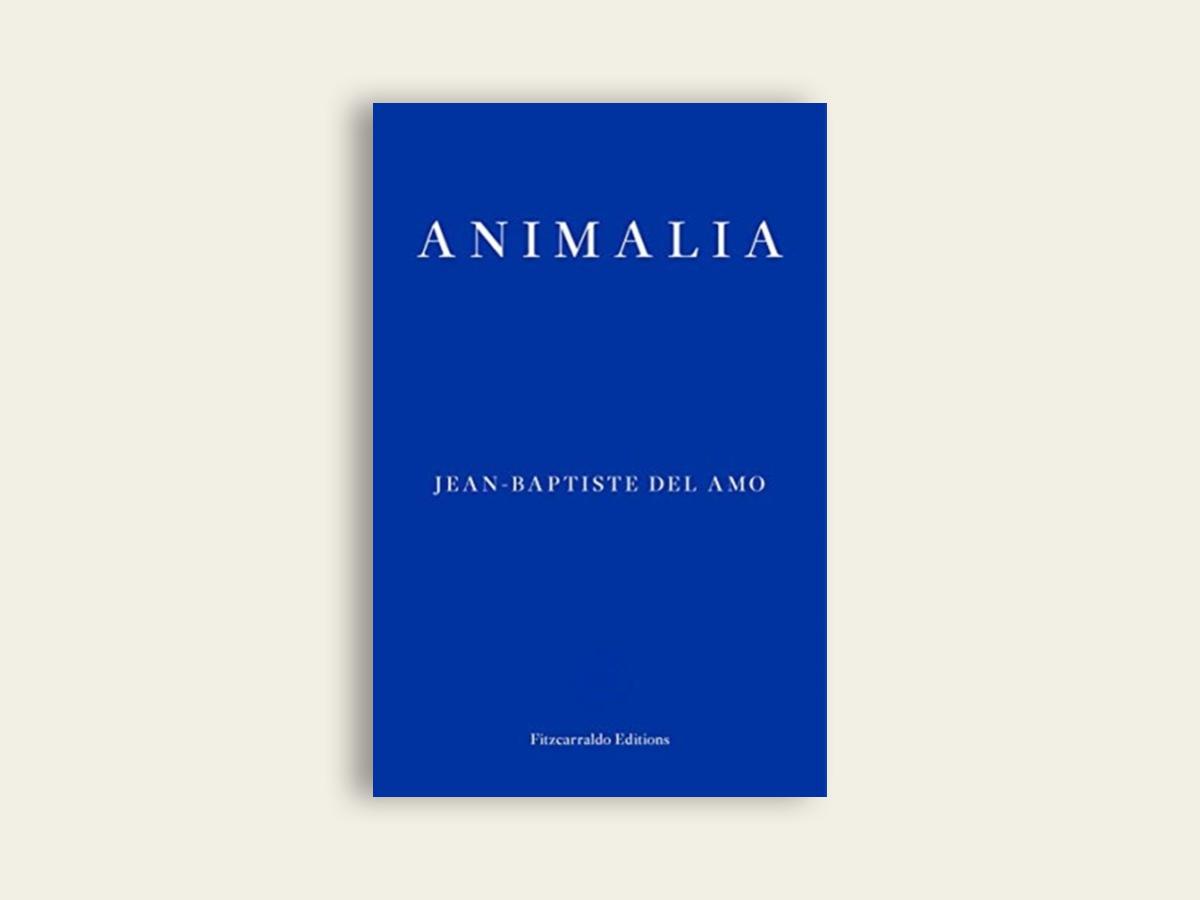 Animalia, Jean-Baptiste Del Amo