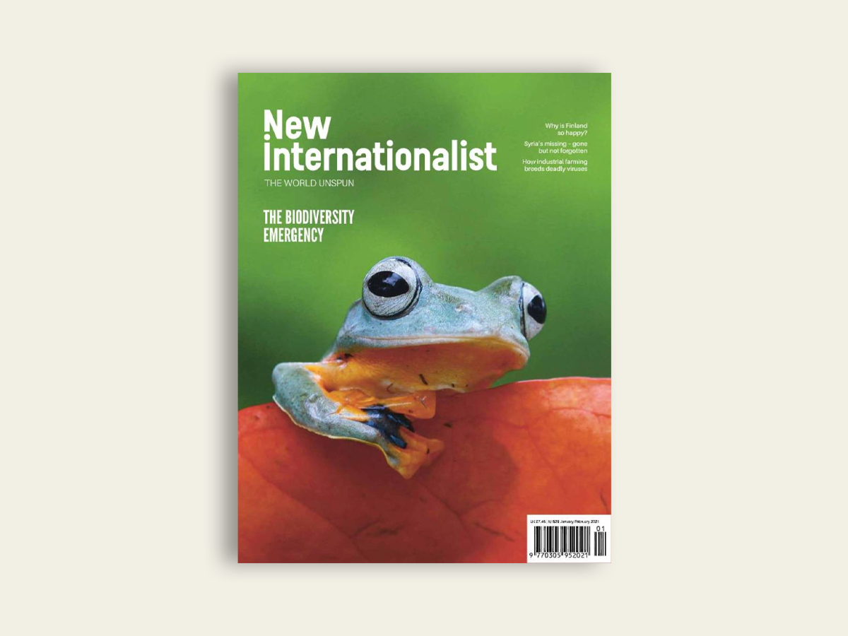 New Internationalist #529. Jan/Feb 2021