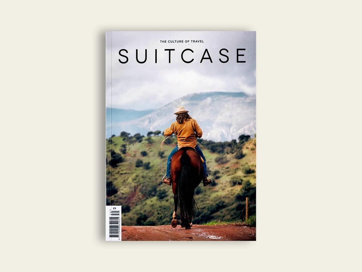 Suitcase #30