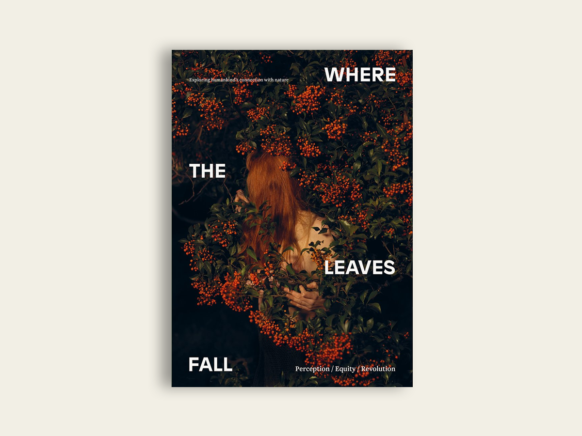 Where The Leaves Fall #7