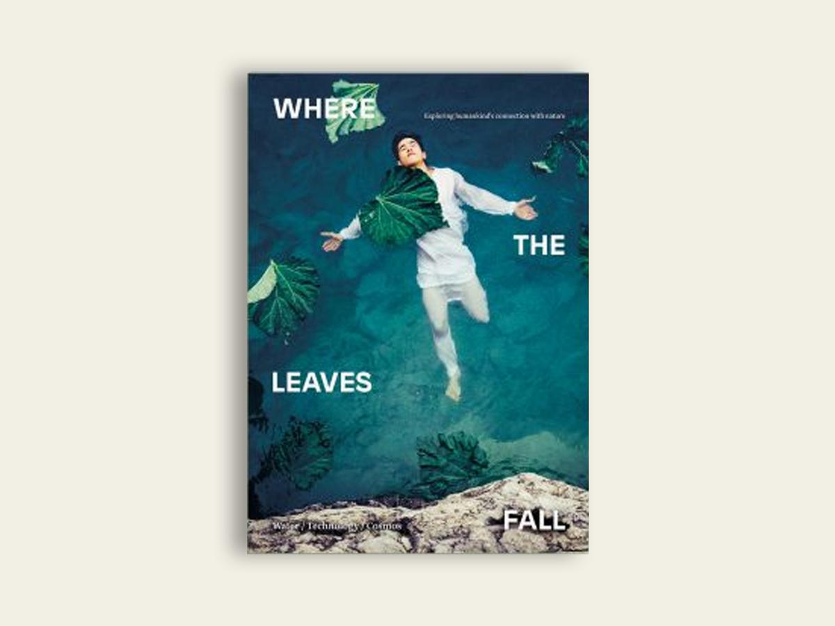 Where The Leaves Fall #5