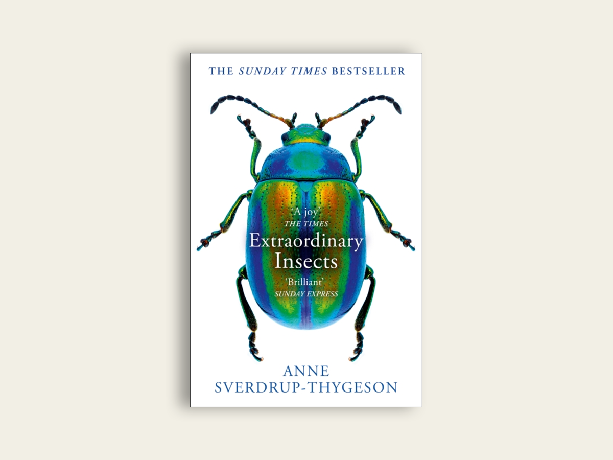 Extraordinary Insects, Anne Sverdrup-Thygeson