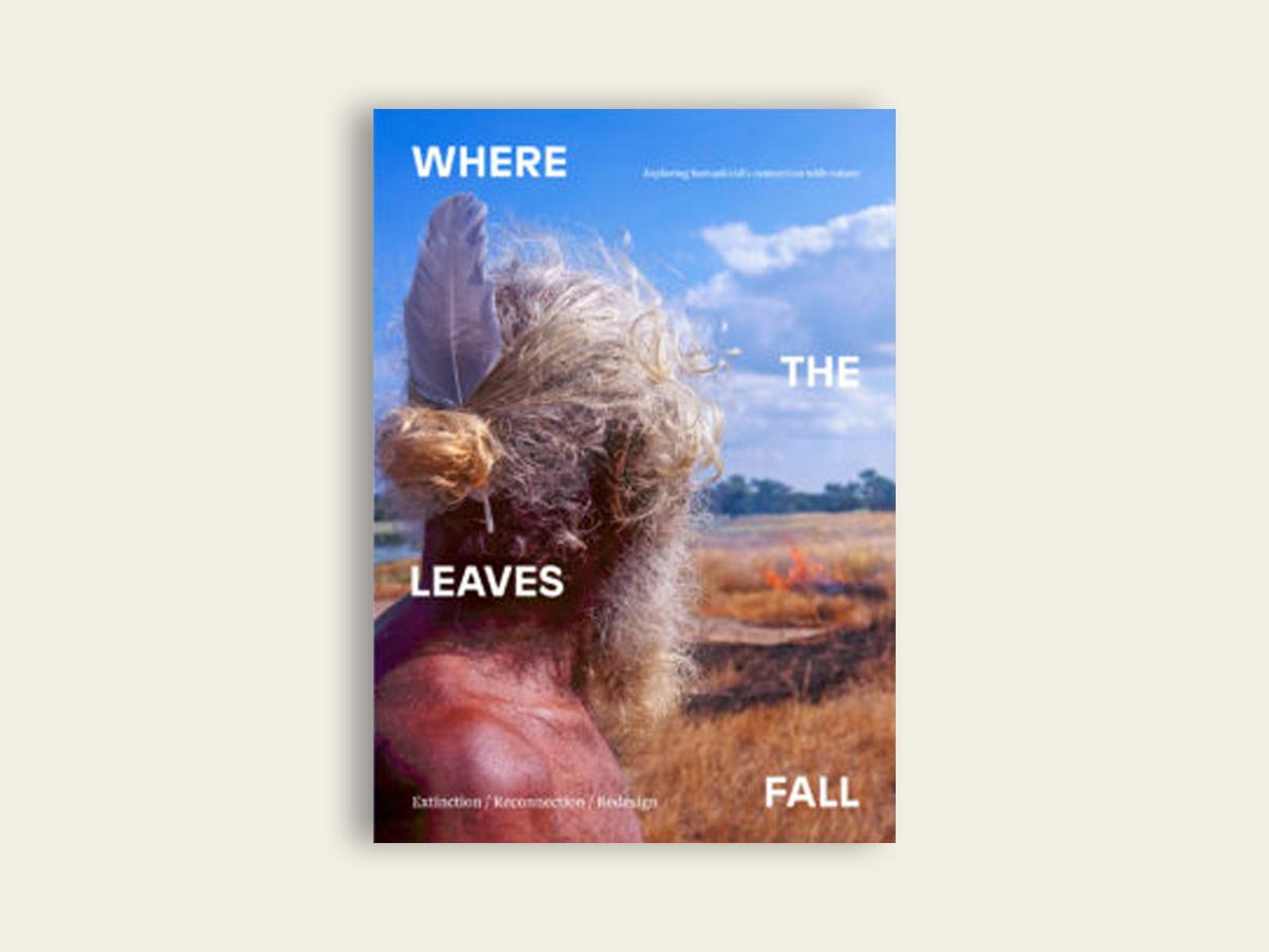 Where The Leaves Fall #3