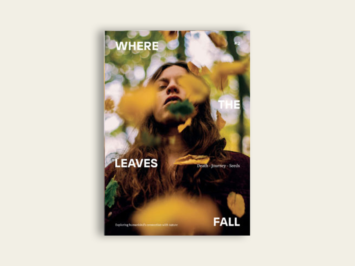 Where The Leaves Fall #2