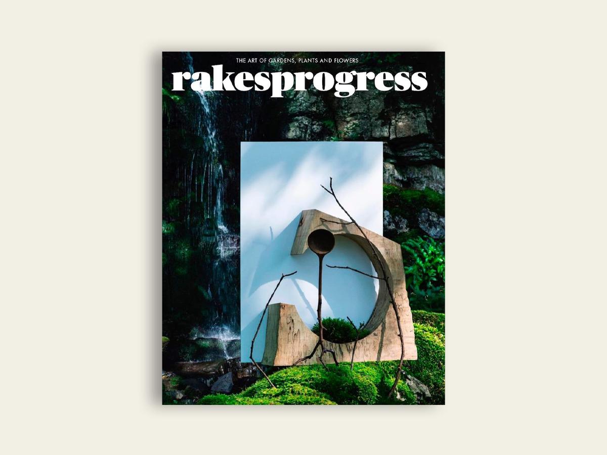 Rakesprogress #13