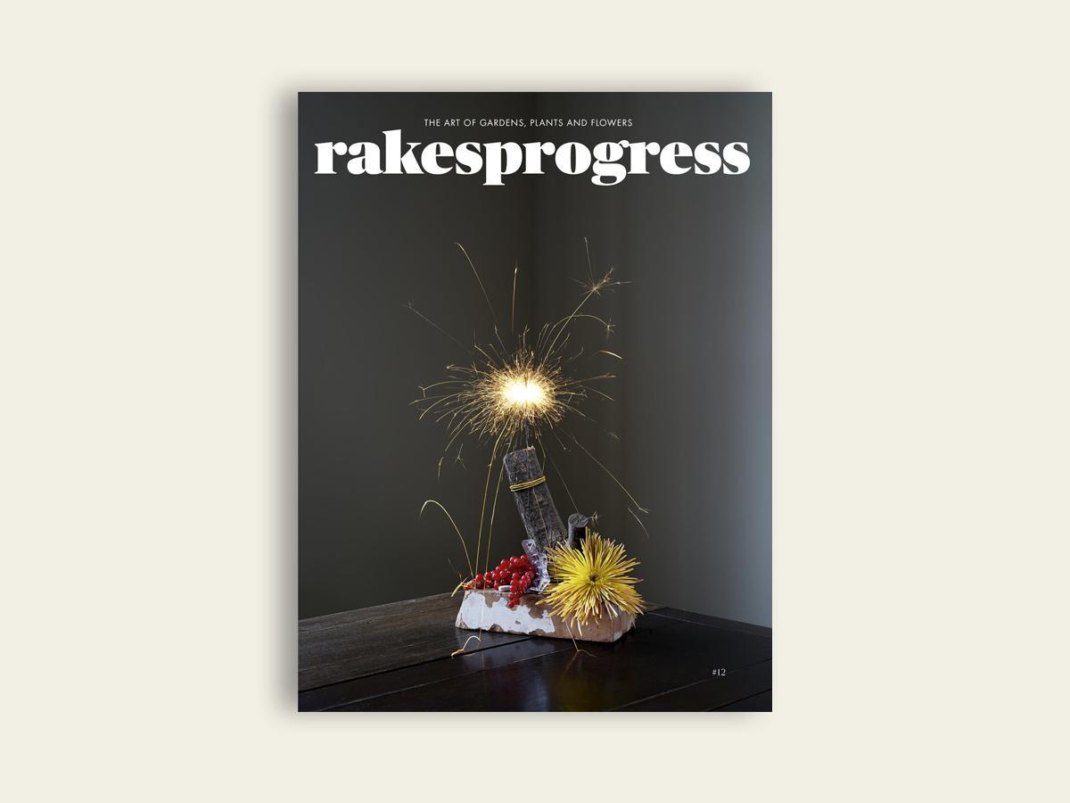 Rakesprogress #12