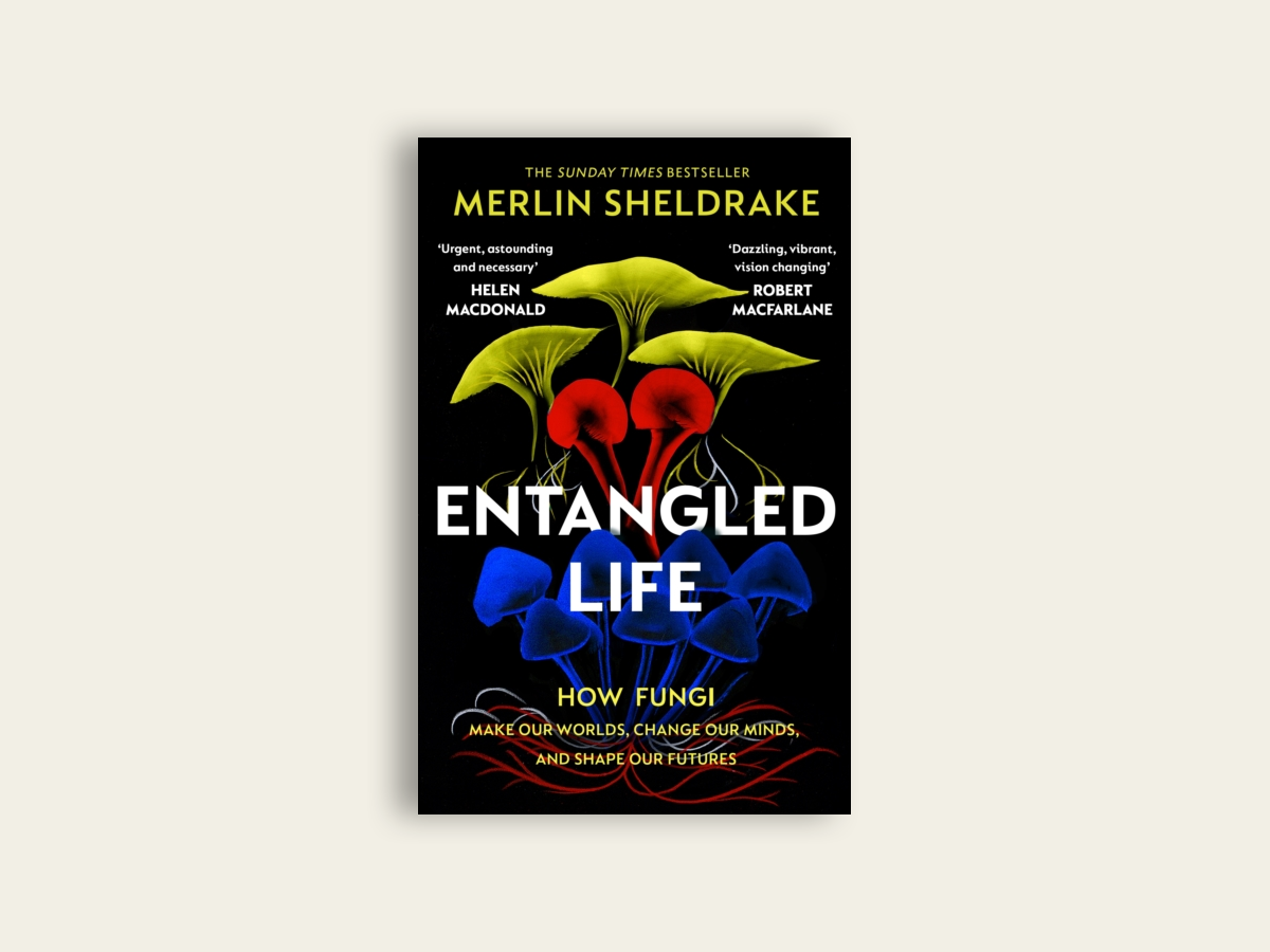 Entangled Life: How Fungi Make Our Worlds, Change Our Minds and Shape Our Futures by Merlin Sheldrake