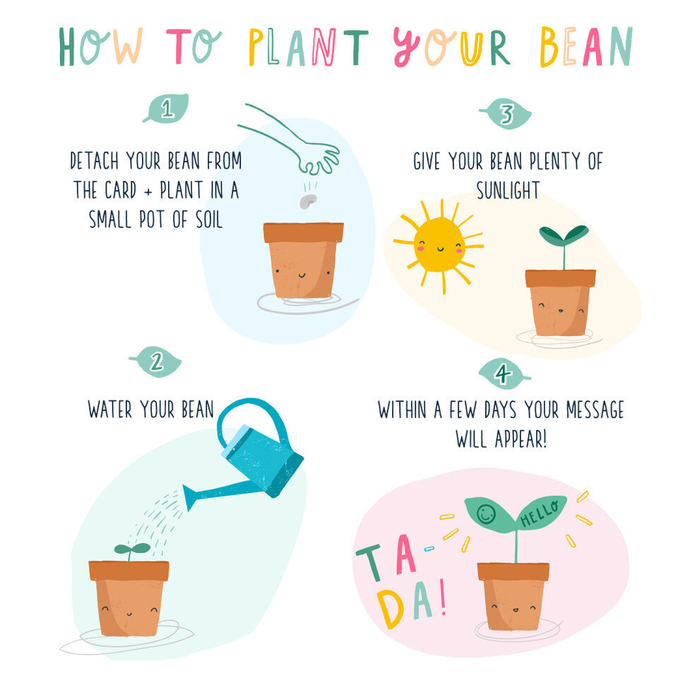 """""""ON THE ARRIVAL OF YOUR NEW HUMAN BEAN"""" CARD WITH A PLANTABLE MAGIC BEAN"""