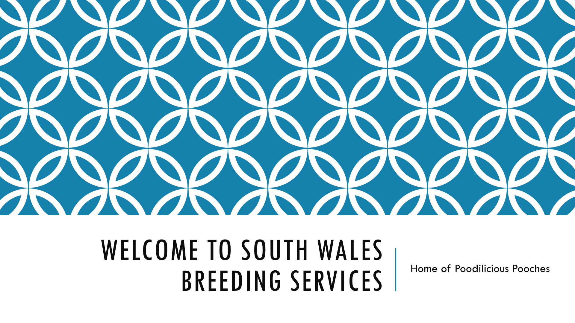 South Wales breeding services