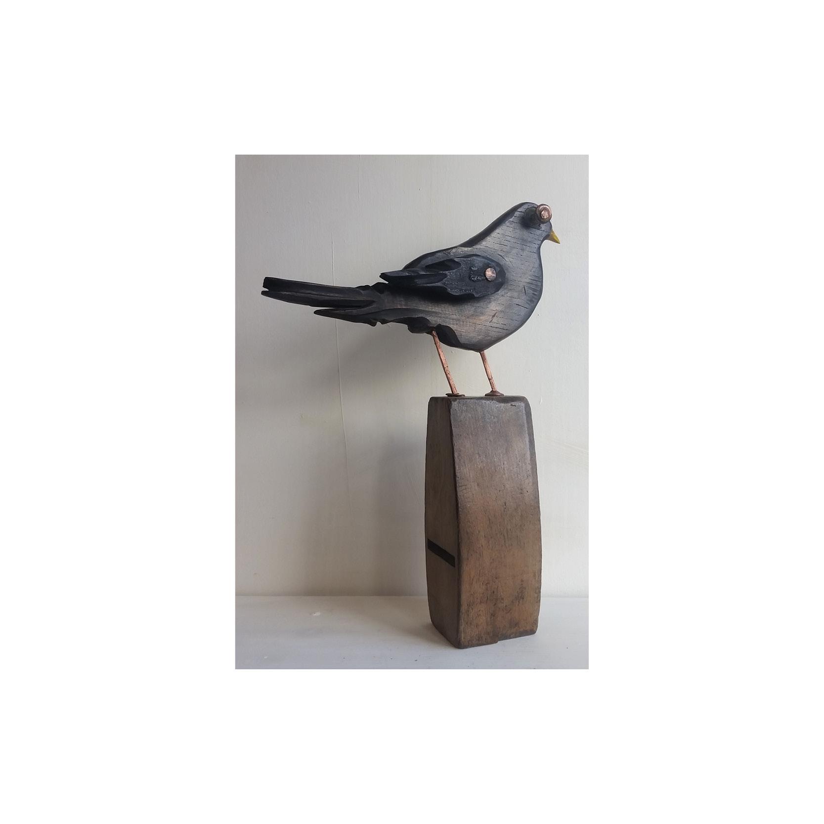 Nic Acaster - RX320 blackbird