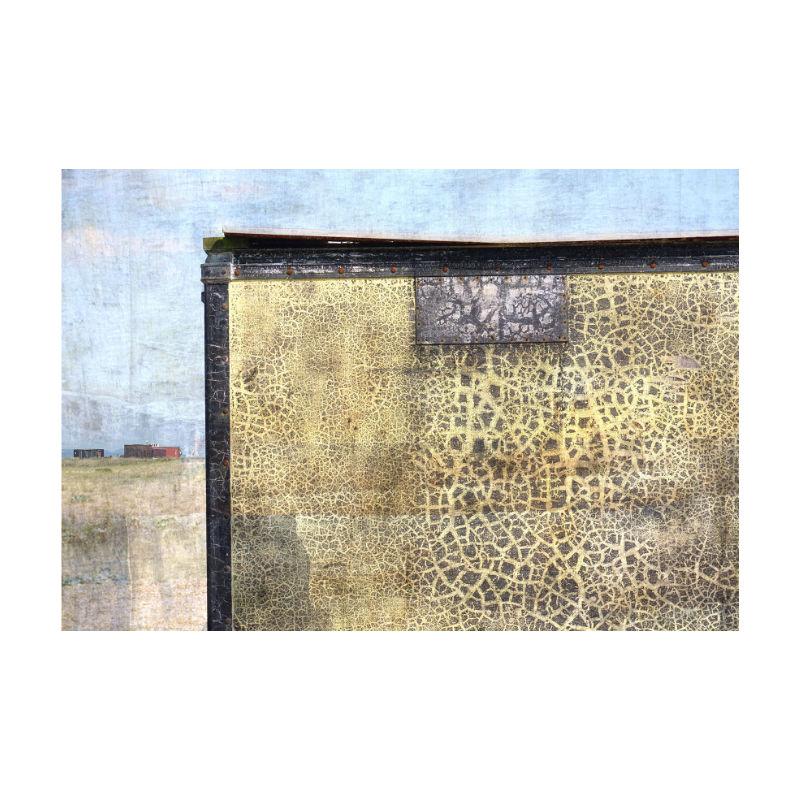 Vivien Oldfield - Leopard Print Case