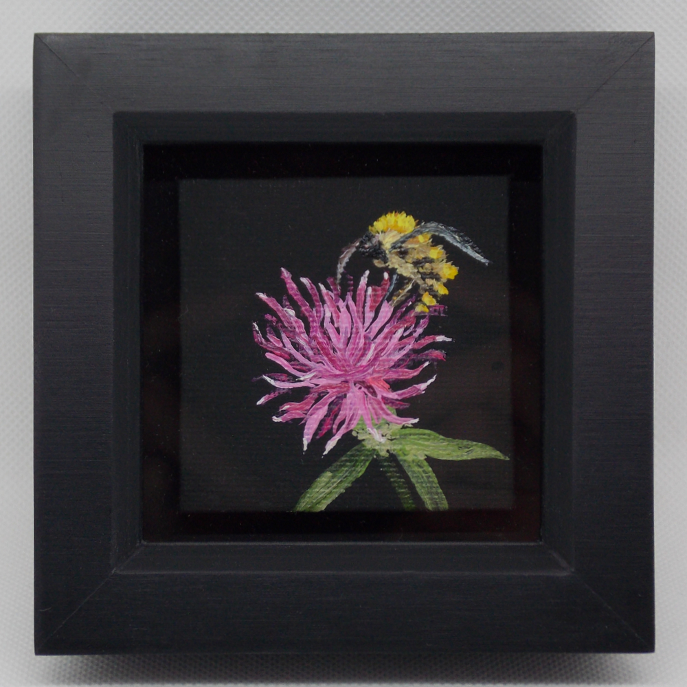Carole White - Bee on Clover