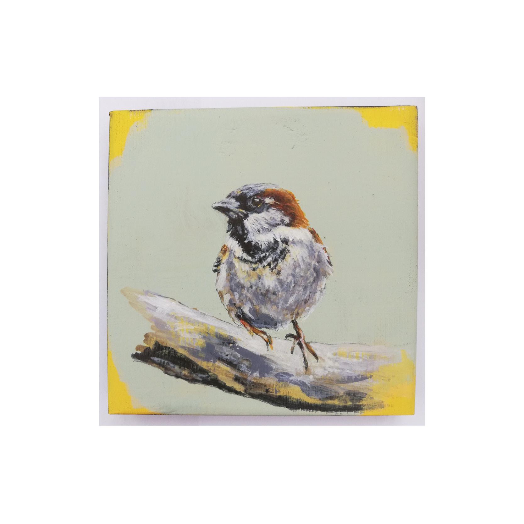 Steve Ferguson - Sparrow on Branch