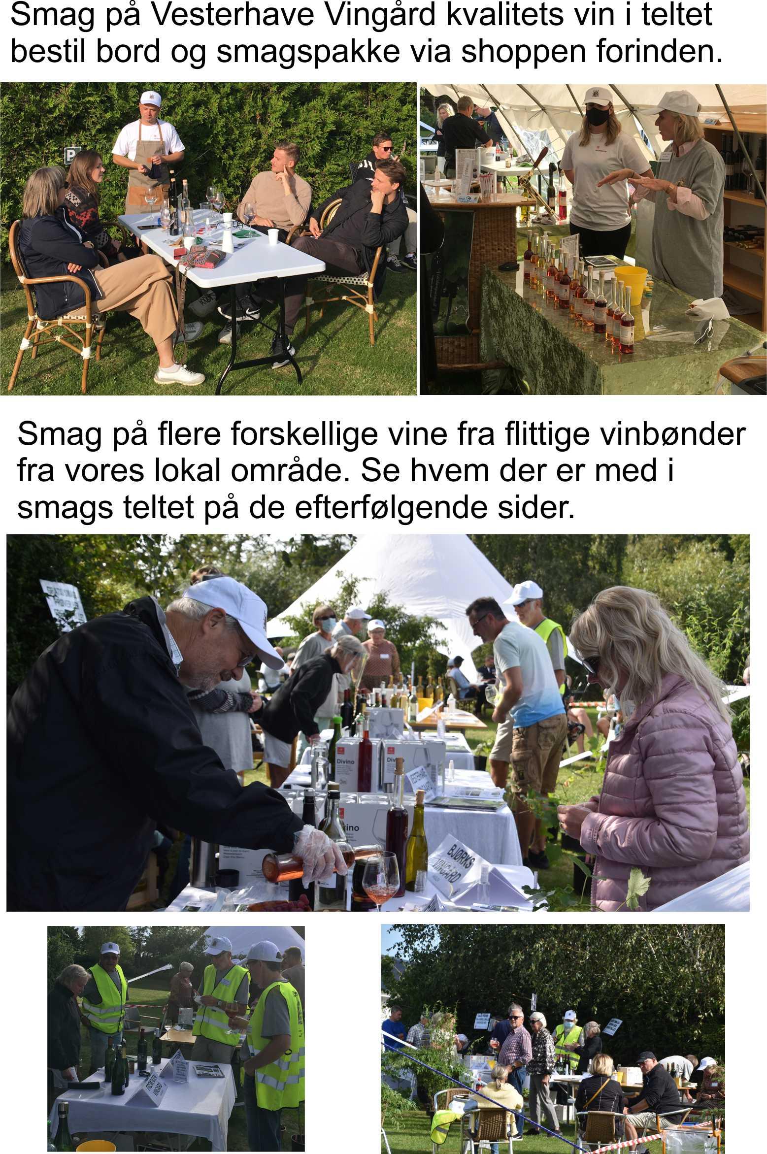 BORD reservation til Vinfestival 4.sept 2021 kl 12-17