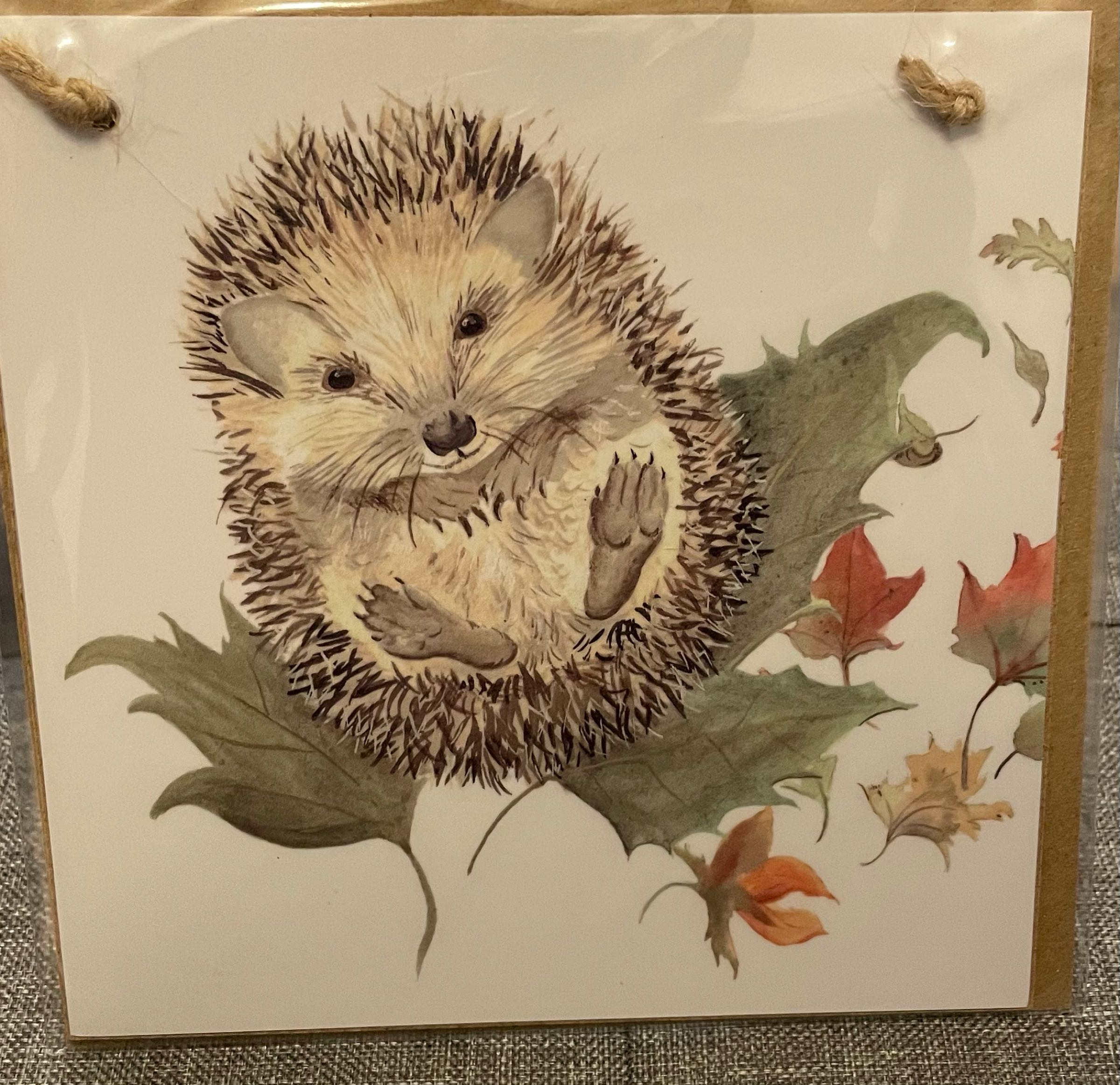 Mr Prickles Hedgehog Wooden forever card