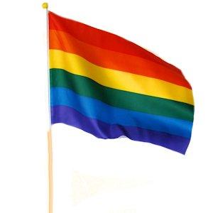 Handflagg - Regnboge
