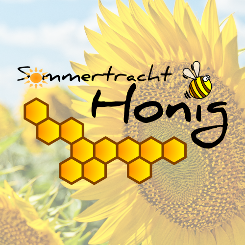 Sommertrachthonig 2019