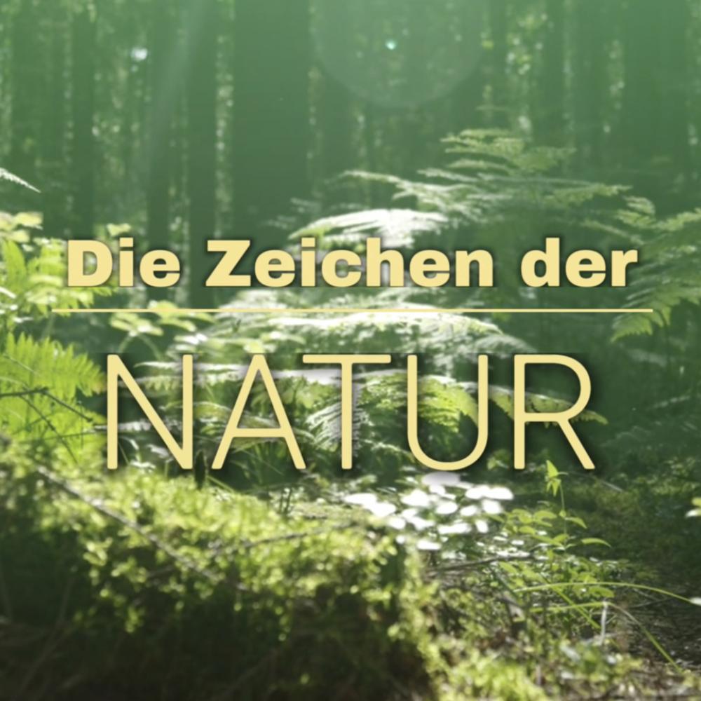 Die Zeichen der Natur richtig deuten, 20.06.2020 14:00 Uhr
