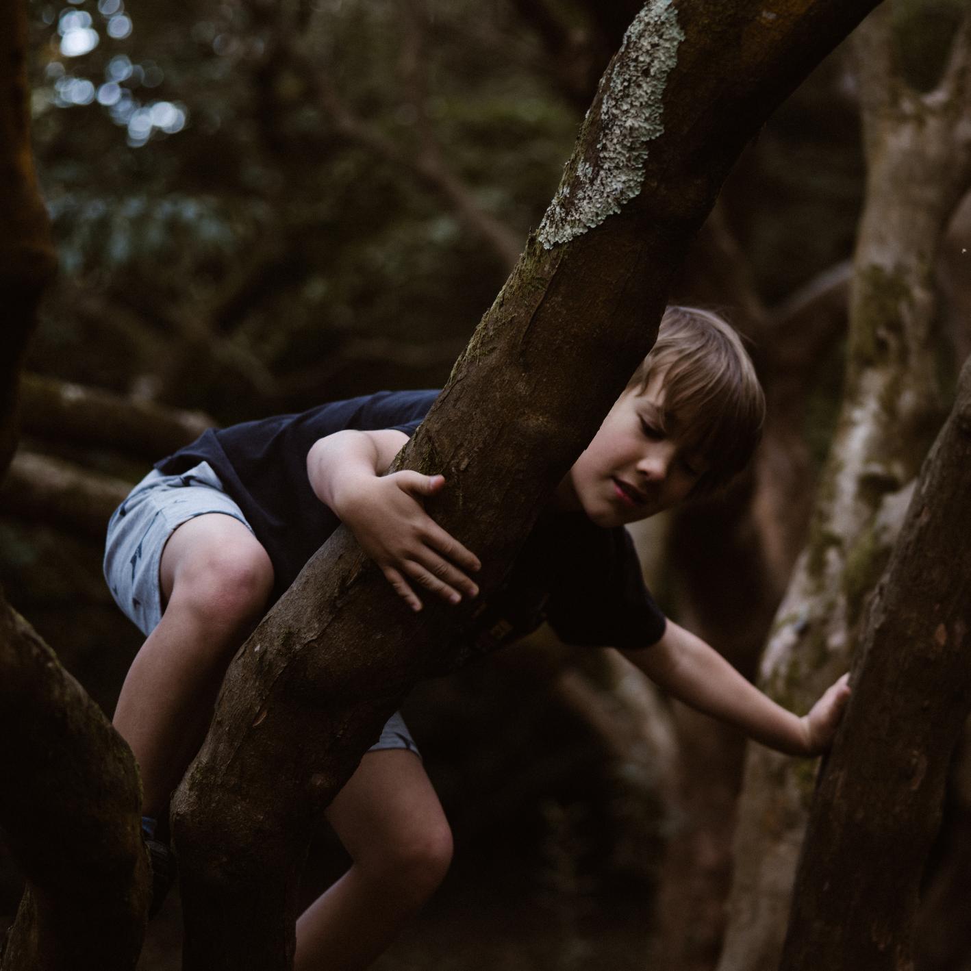 Bushcraft Kids - junge Waldläufer